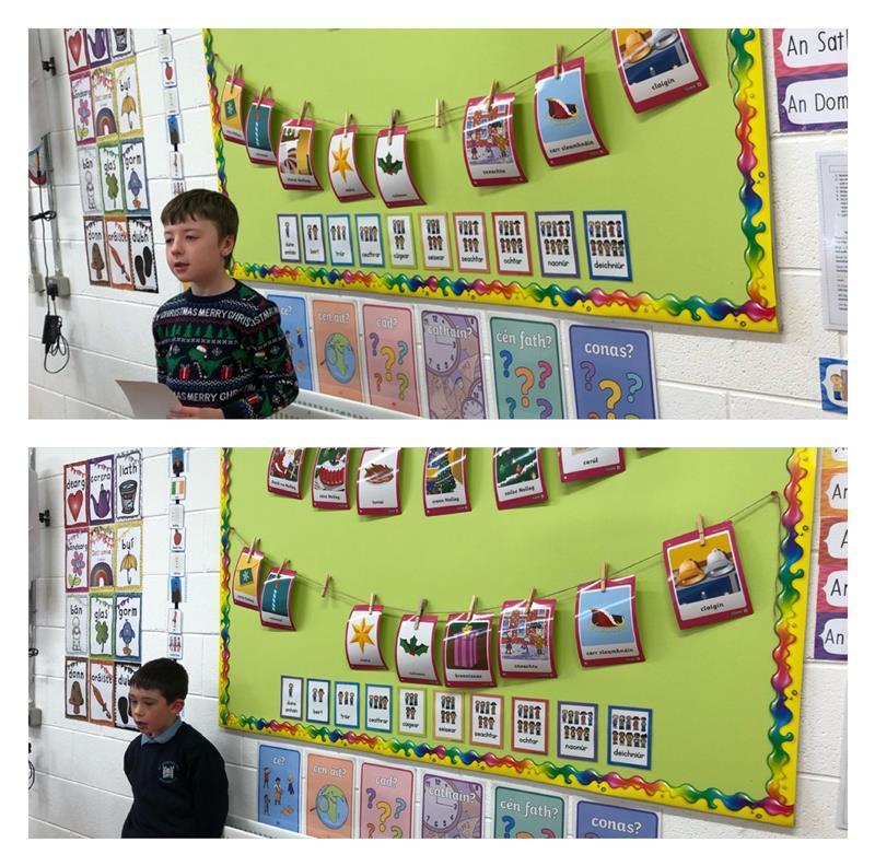 Gaeilge collage.jpg