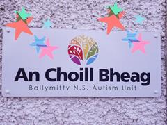 An Choill Bheag - Week 6 of Home Learning 2021